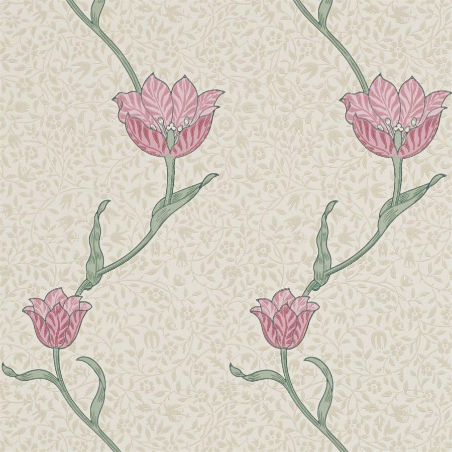 Morris & Co Tapet Garden Tulip Rose