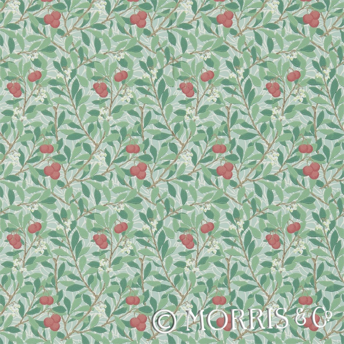 Morris & Co Tapet Thyme Coral