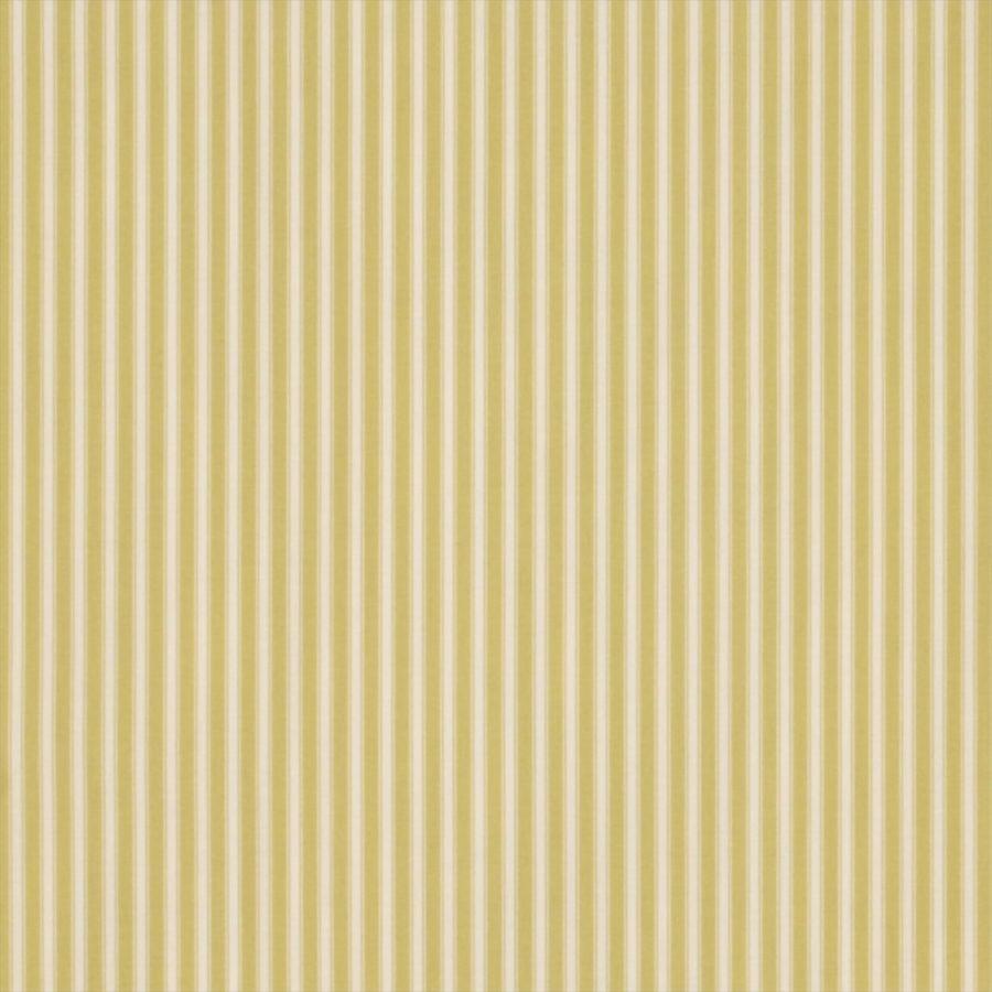 Sanderson Tapet New Tiger Stripe Linden Green