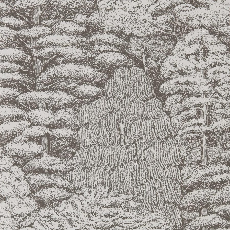 Sanderson Tapet Woodland Toilé Charcoal