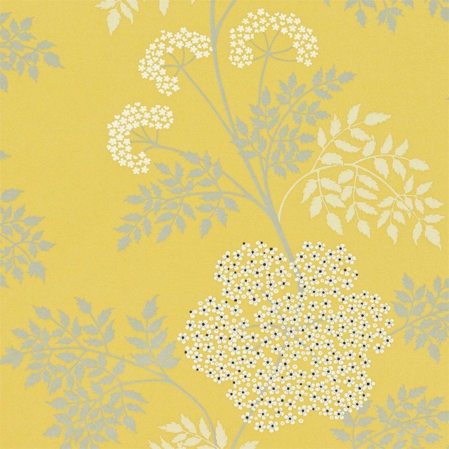 Sanderson Tapet Cowparsley Chinese Yellow