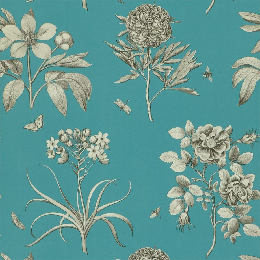 Sanderson tapet Etchings and Roses Pale / Cobalt