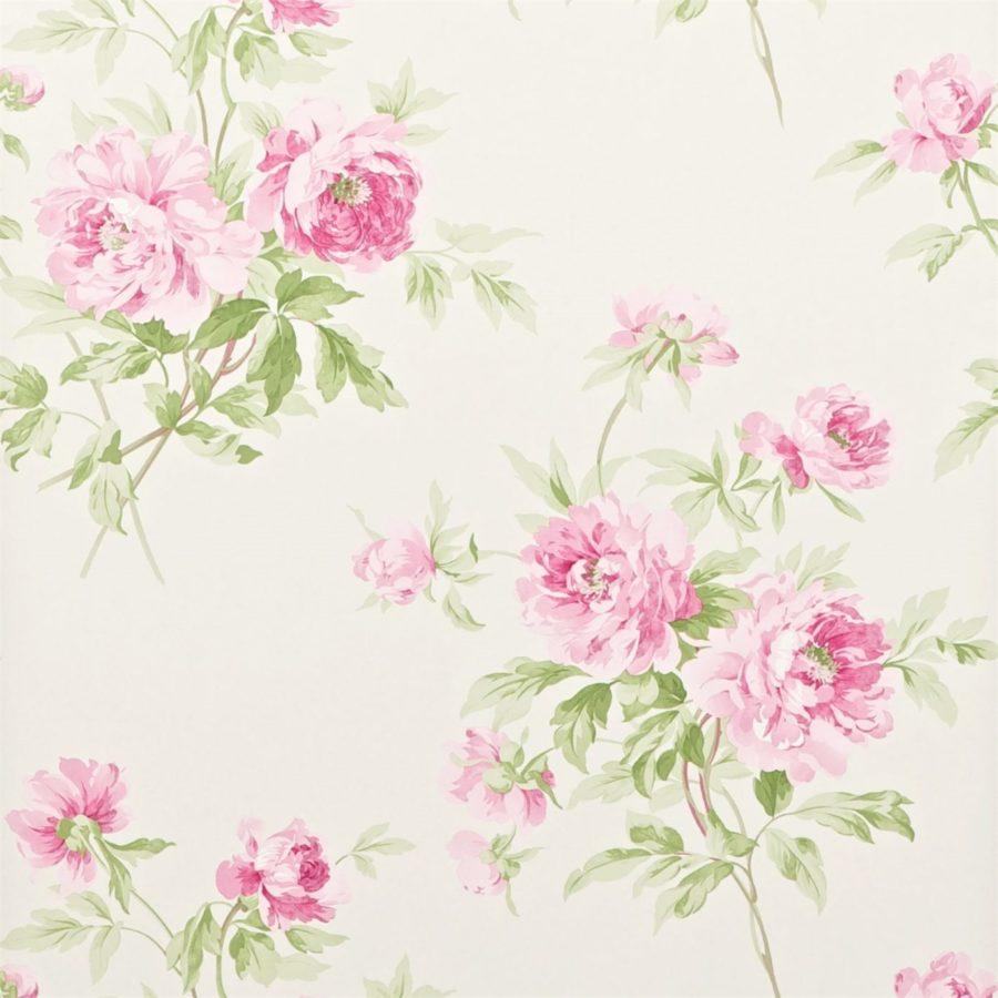 Sanderson blommig Tapet Adele Raspberry Ivory