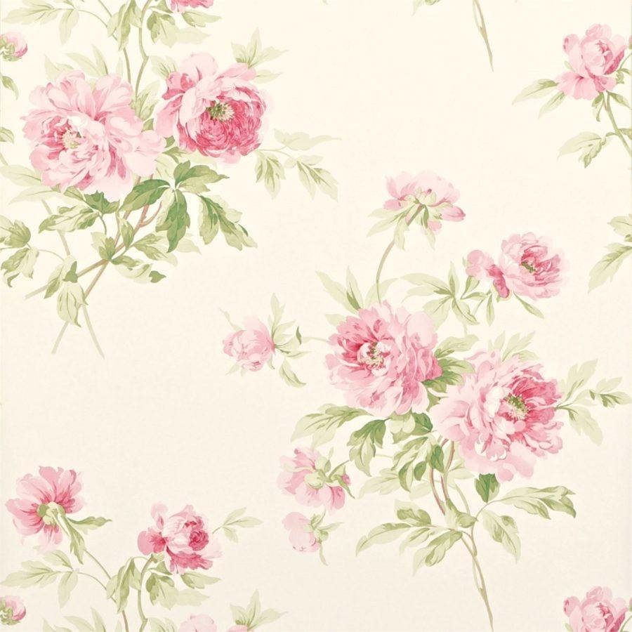 Sanderson blommig Tapet Adele Rose Creme