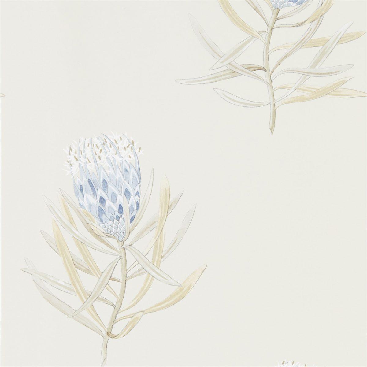 Sanderson tapet Protea Flower China Blue Canvas