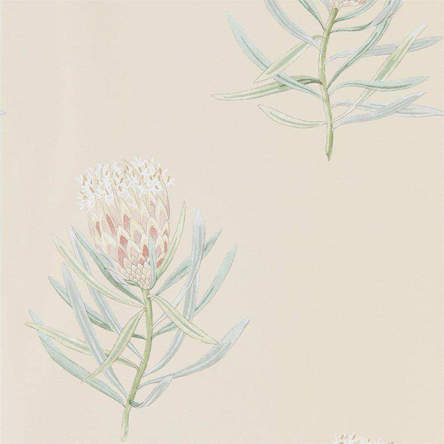Sanderson tapet Protea Flower Russet/Green