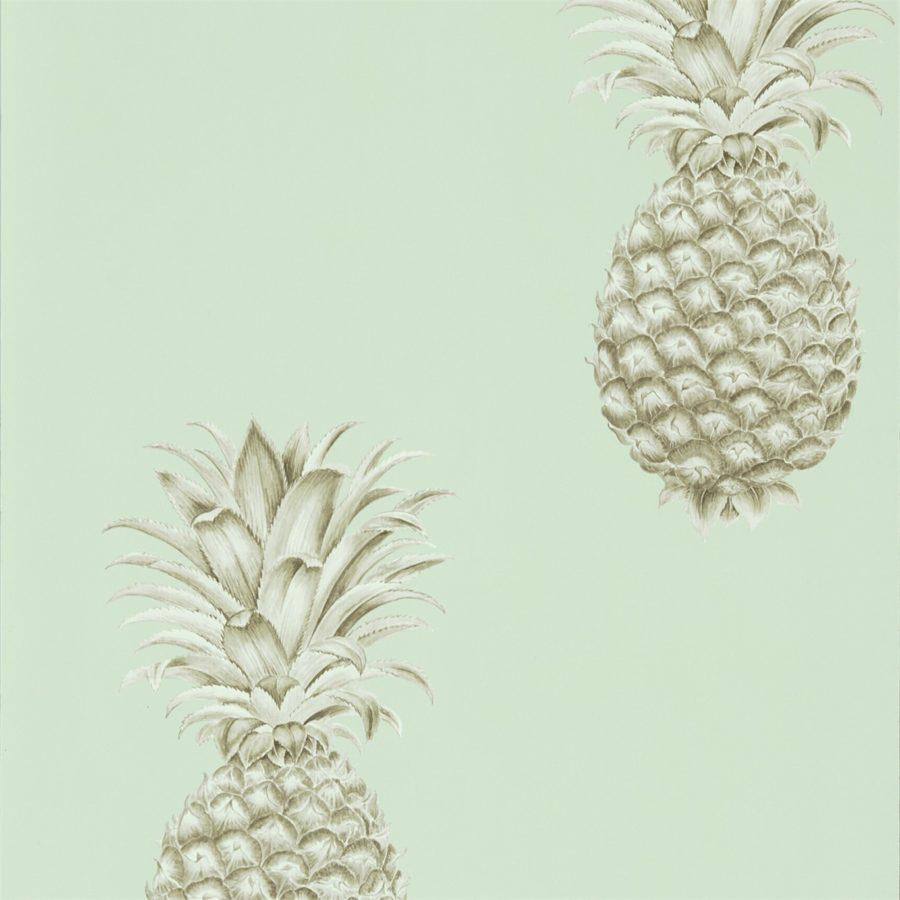 Sanderson Tapet Pineapple Royale Porcelain/Sepia
