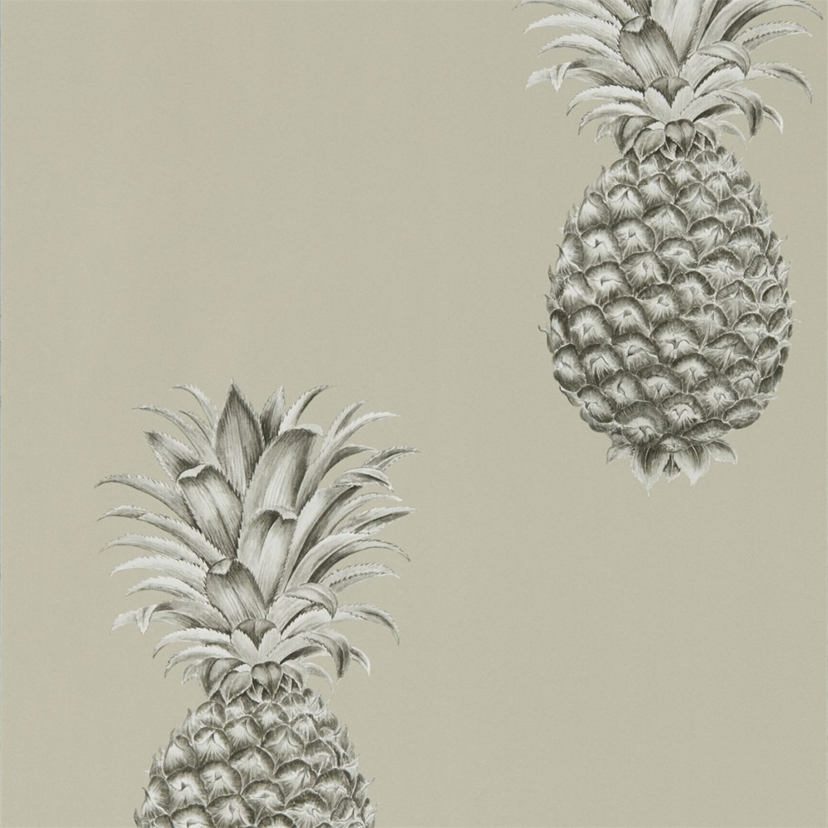 Sanderson Tapet Pineapple Royale Charcoal/Champagne