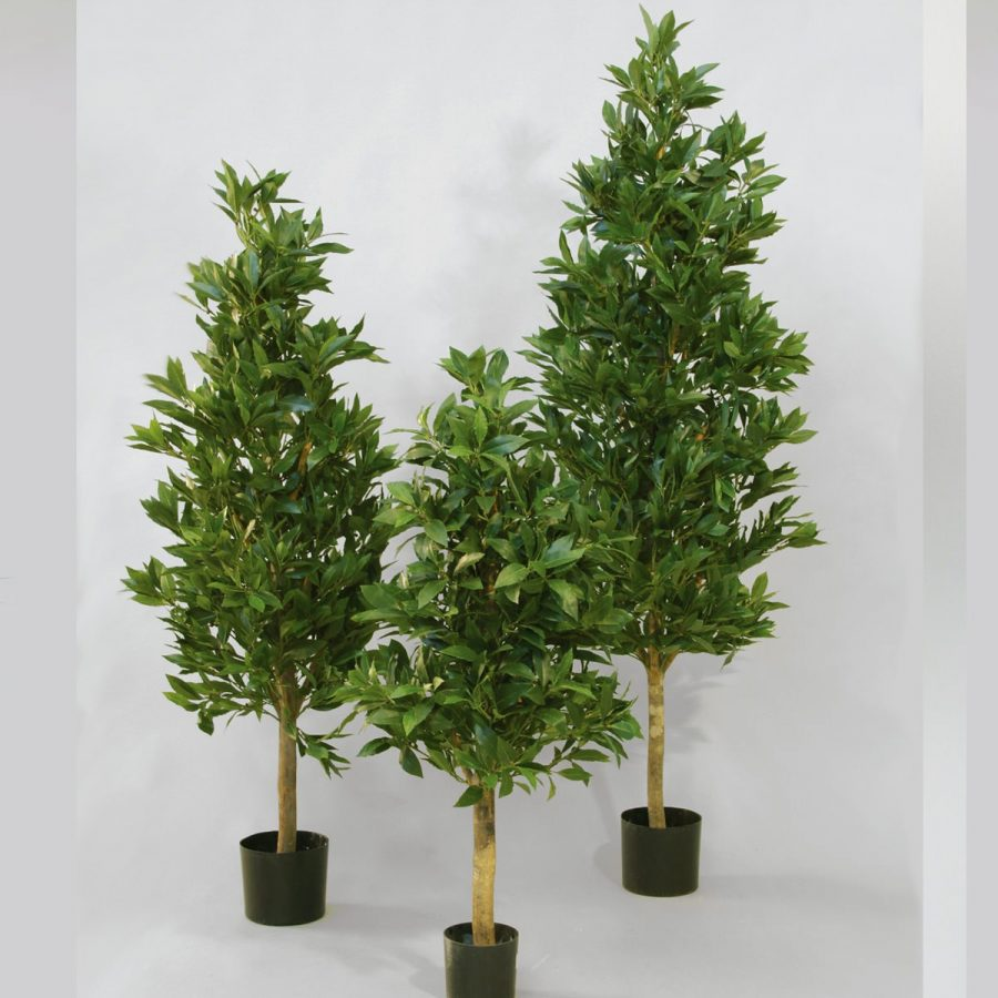 Konstgjorda växter Lagerblad