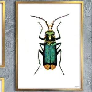 Vanilla Fly Tavelram trä guld 30x40cm
