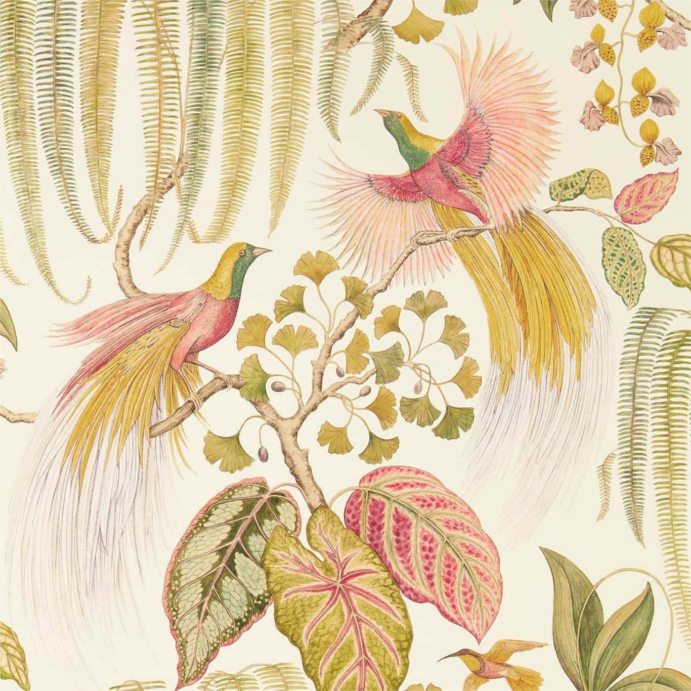 Sanderson Tapet Bird of Paradise Olive
