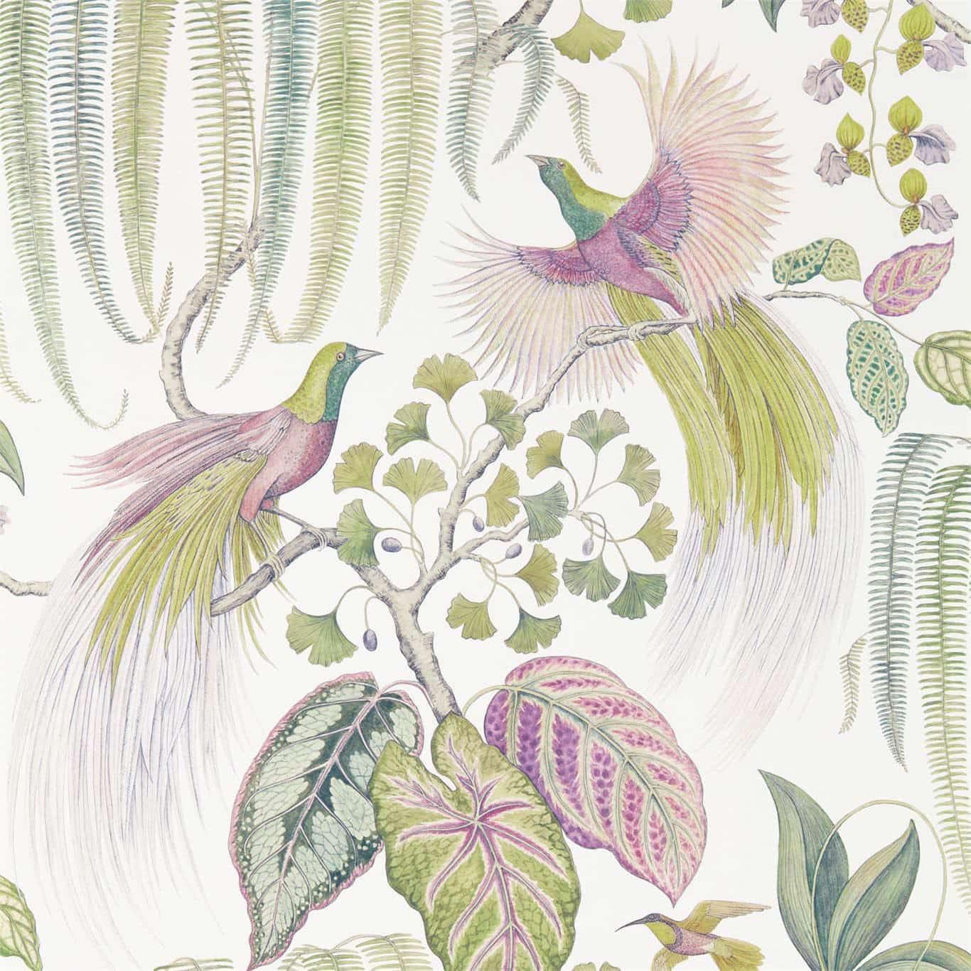 Sanderson Tapet Bird of Paradise Orchid