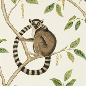 Sanderson Tapet Ringtailed Cream Olive