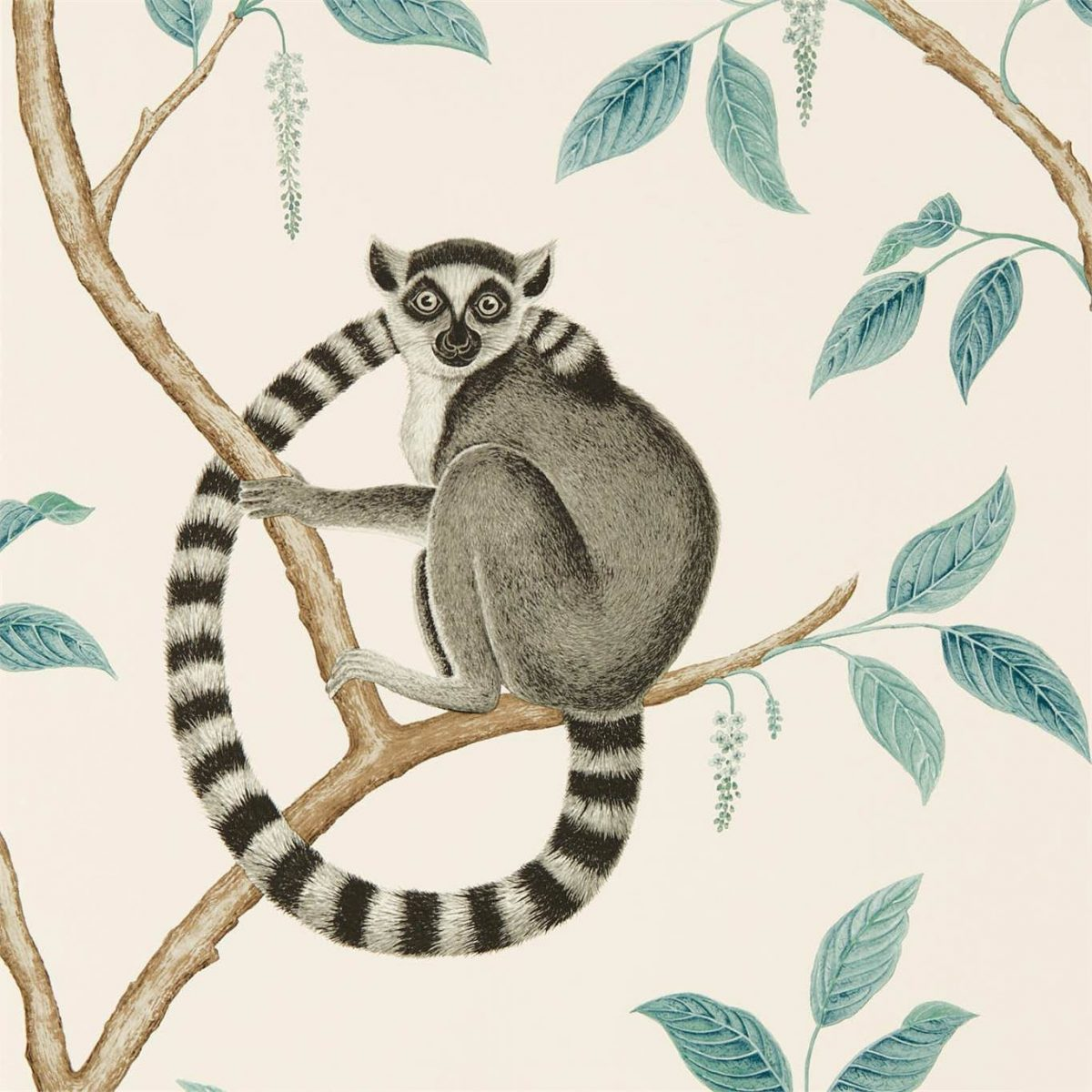 Sanderson Tapet Ringtailed Lemur Stone/Eucalyptus